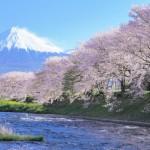 古来からの恵み!富士山麓名水<静岡県編>