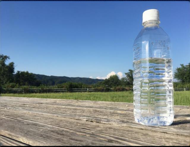 水選びで注目すべきポイント