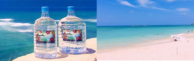 最高品質のハワイの天然水が原水の水を飲める