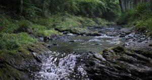 メリット2:宮川の天然水が飲めるのはアクアセレクトだけ
