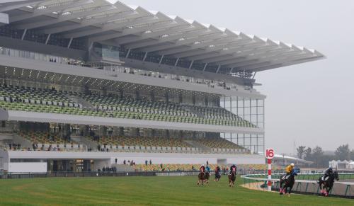 中京競馬場改修
