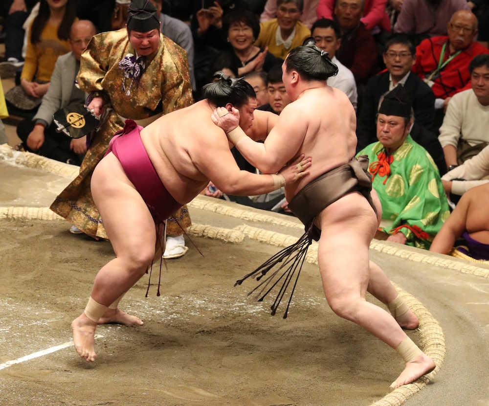 今日の相撲の結果