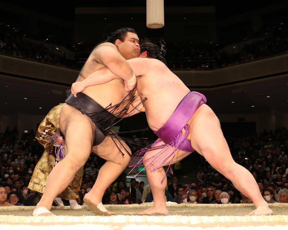 相撲 優勝 賞金